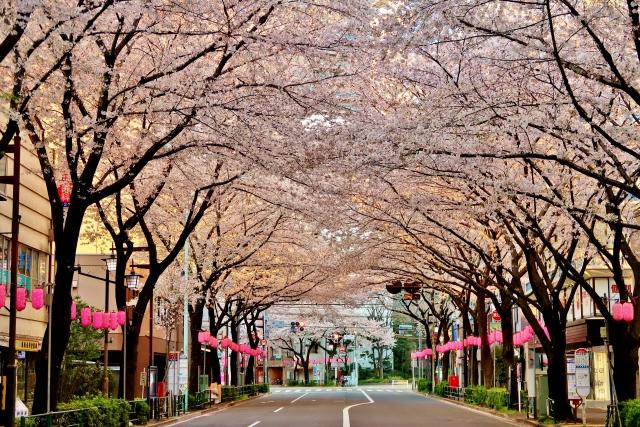 早稲田に入りたいなら新思考入試を受けるべきー新思考入試とは何か?―