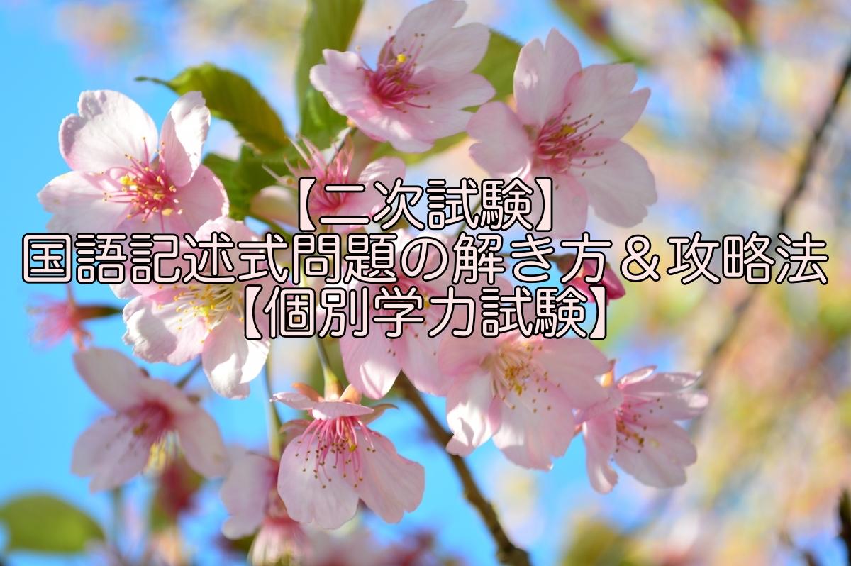 【二次試験】国語記述式問題の解き方&攻略法【個別学力試験】